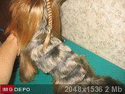 http://imgdepo.ru/thumb/2012/Nov/30/2e46ac66.jpg